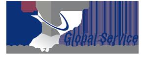 DP Global Service